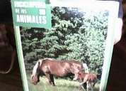 Vendo enciclopedia de los animales