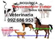 Clases particulares de bioquímica  facultades 092 686 953