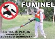 Fumigacion en uruguay