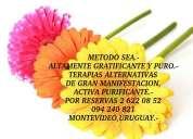 Reiki naturista 095661277