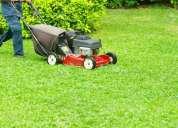 Corte de pasto, limpieza de terrenos,basurales, podas,mantenimiento, etc contactarse.