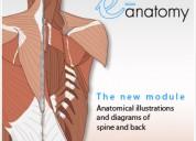 clases de bioquimica, biofisica y anatomÍa para alumnos de tecnología médica