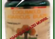 Graviola planta tropical, plantas tropicales