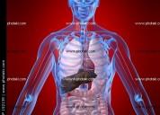 Inicio preparacion ingreso psicomotricidad, fisioterapia,imagenologia, registros medicos, etc
