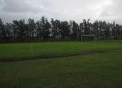 Alquilo canchas de fútbol 11 iluminada.