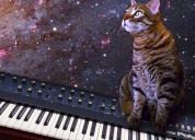Clases de teclado y teoría musical