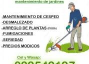 Se corta pasto mantenimiento de jardÍnes