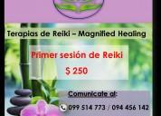 Sesiones de reiki,la primera a $200!.