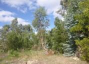 parque del plata norte.