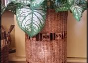 Canastos maceteros bandejas artesanal ecologicas