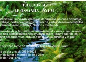 Tarot con una consulta gratis 095733718