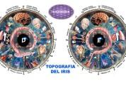 Iriologia y naturopatia paracelsiana