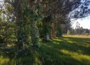 5 lotes miramar acres en san rafael-el placer