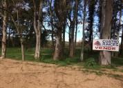 Se venden 12 hectareas en pando